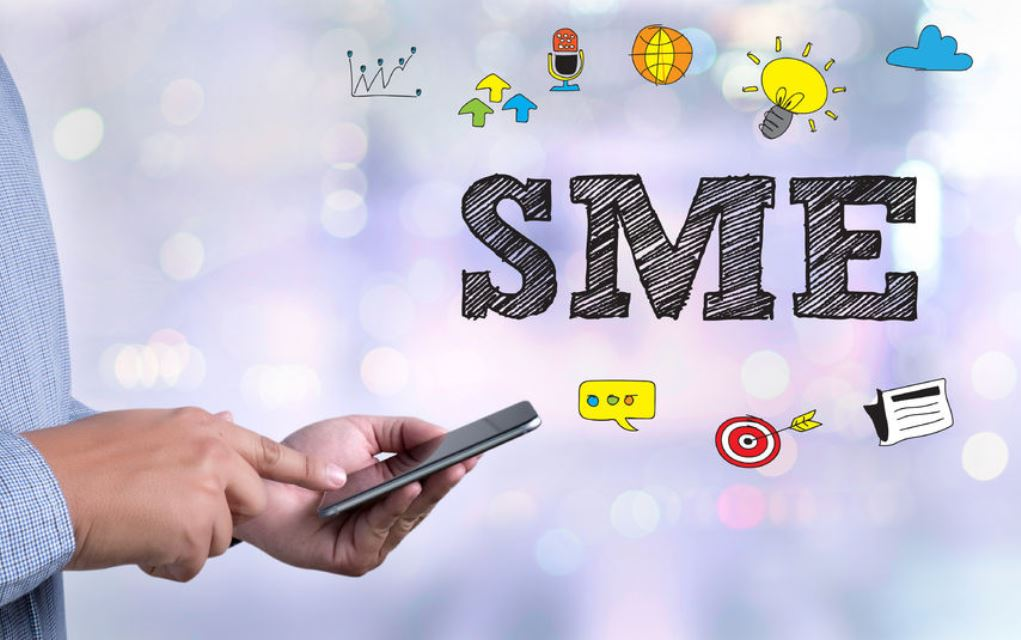 What are the main characteristics of SMEs?