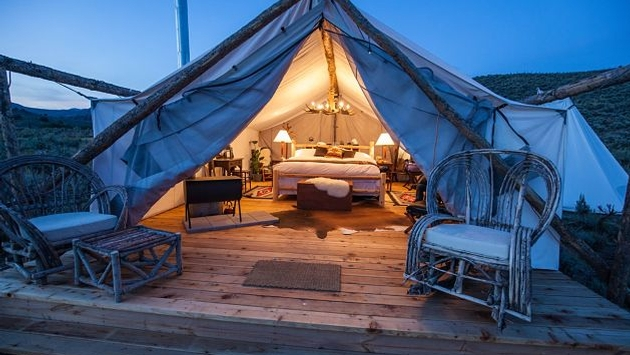 The ultimate guide to choose a tent worth for your business